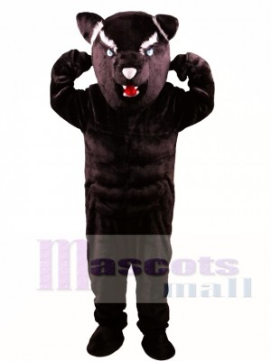 Black Panther Power Cat Mascot Costume