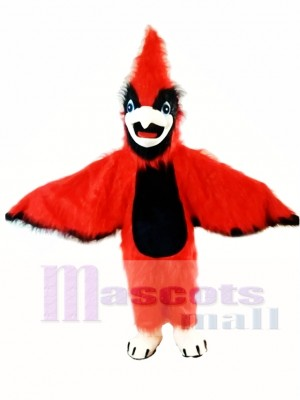New Big Red Cardinal Mascot Costume