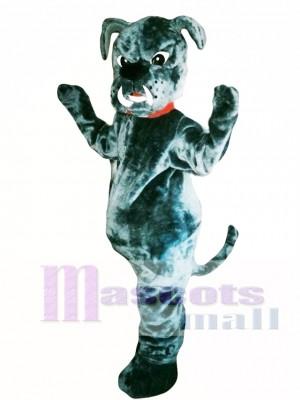 Bull Dog Mascot Costume Adult Costume