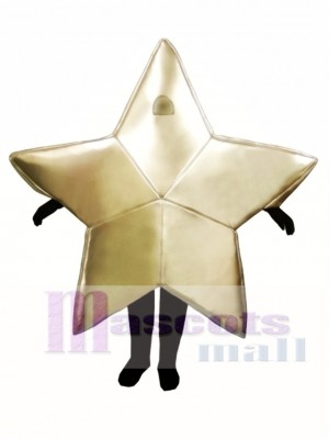 Star Christmas Mascot Costume