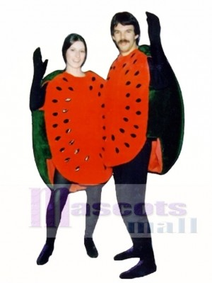 Watermelon Half Mascot Costume Fruit