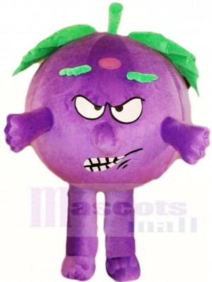 Angry Eggplant Mascot Costumes Vegetable Plant