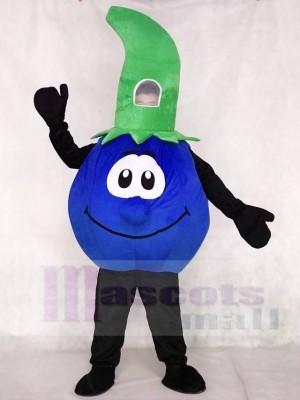Bobby Blueberry Mascot Costumes Plant Fruit