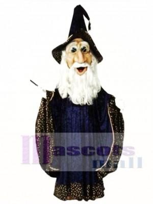 Wizard Mascot Costume