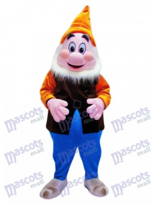 Happy Cheerful Dwarf Mascot Adult Costume Cartoon Anime