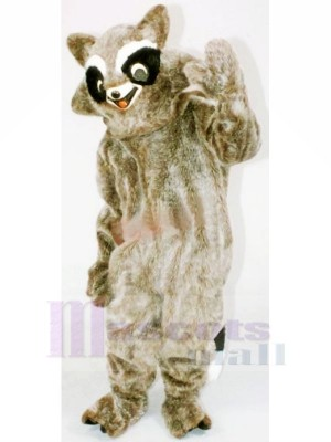 Brown Raccoon Mascot Costumes Cheap