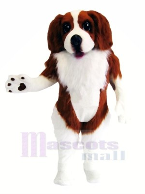 Spaniel Dog Mascot Costumes Cartoon