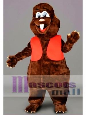 Cute Beaver Mascot Costume