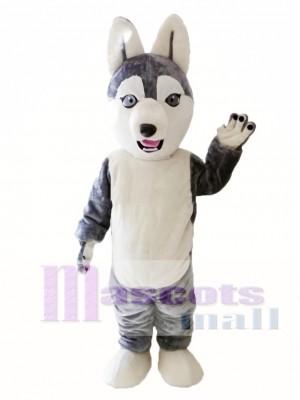 Animal Dog Siberian Husky Mascot Costume for Adult