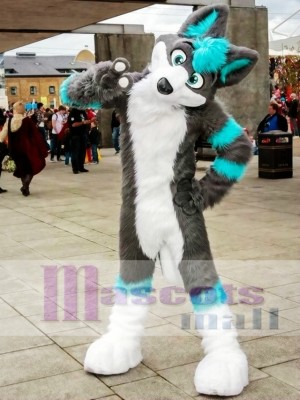 Gray and Blue Husky Dog Fursuit Mascot Costume