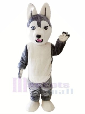 Cute Grey Husky Dog Mascot Costumes Animal