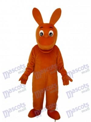 Little Kangaroo Mascot Adult Costume Animal