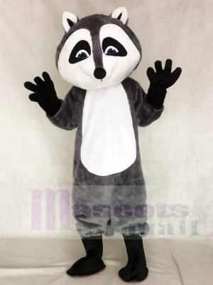 Raccoon Mascot Costumes Animal