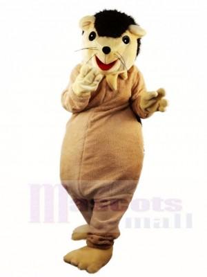 Hedgehog Porcupine Mascot Costumes Animal