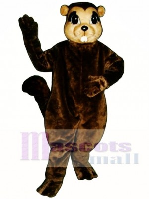 Susie Squirrel Mascot Costume