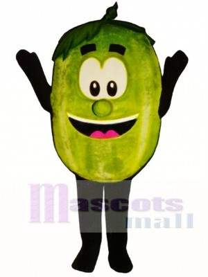 Wally Watermelon Mascot Costume