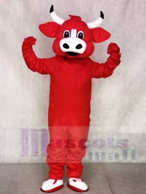 Chicago Bulls Benny The Red Bull Mascot Costumes Animal
