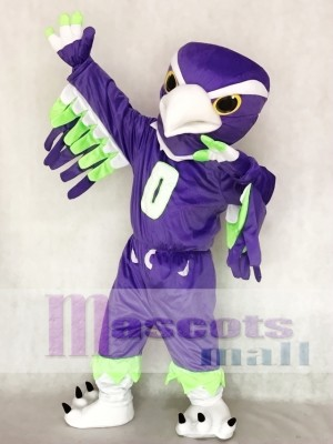 Seattle Seahawks Blitz the Seahawk BOOM the Seahawk Mascot Costume Animal
