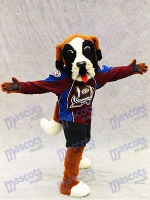 Bernie the Dog St. Bernard Colorado Avalanche Mascot Costume Animal