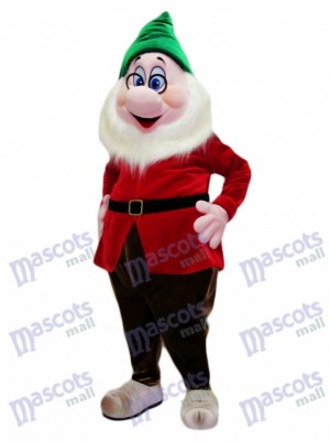 Doc Clever Dwarf Mascot Costume Cartoon Anime