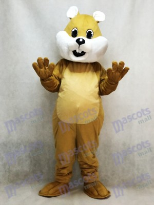 Chubby Squirrel Mascot Costume with White Belly Animal