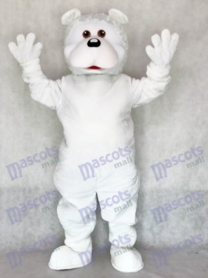 Adult Cute White Bear Adult Mascot Costume Animal