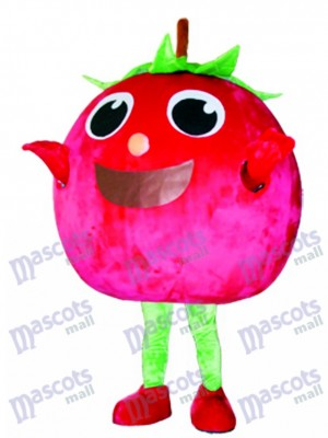 Red Tomato Mascot Costume Fruit Vegetable Food
