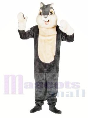 Cute Grey Squirrel Mascot Costumes