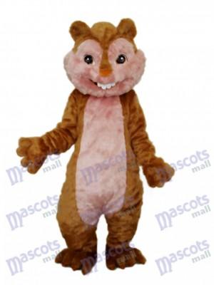 Yellow Squirrel Mascot Adult Costume Animal