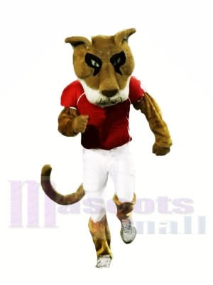 College Cougar Mascot Costumes