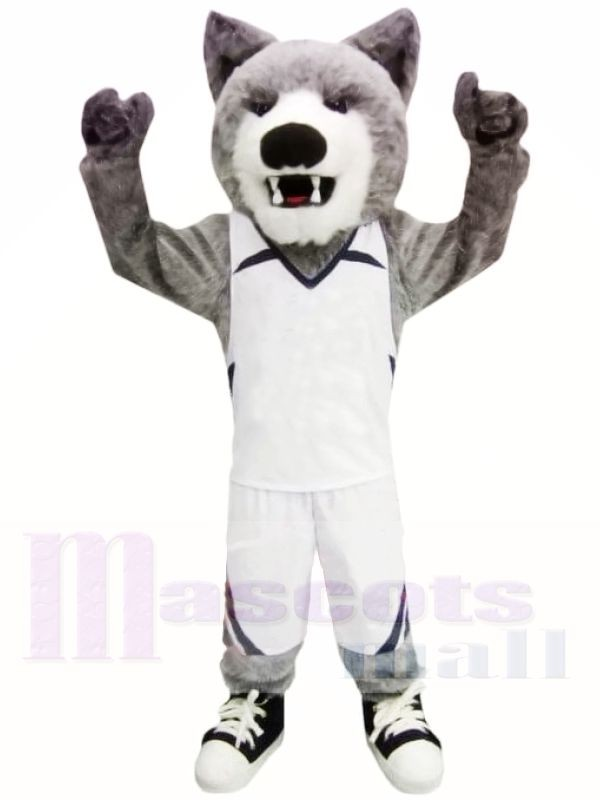 Cody Coyote Mascot Costumes