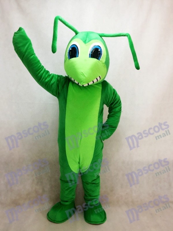 Grasshopper Mascot Costume Insect